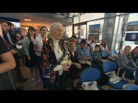 Dr. Jane Goodall talks to euronews