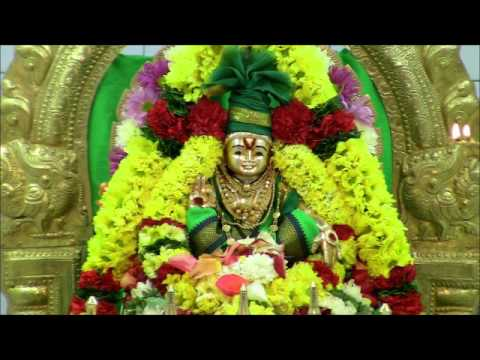 Karuvaraiyi Irunthen... சுவாமியே, சரணம் ஐயப்பா!