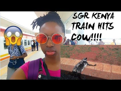 SGR KENYA : TRAIN HITS A COW(LIVE FOOTAGE)!!!!!!!!