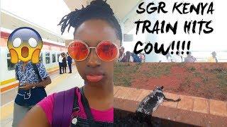 SGR KENYA : TRAIN HITS A COW(LIVE FOOTAGE)!!!!!!!!