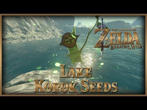 Zelda Breath of the Wild • Korok Seeds • Lake