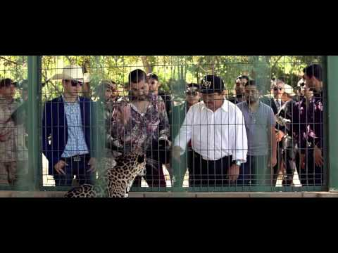 Los Titanes De Durango -  Ando Arremangando Video Oficial