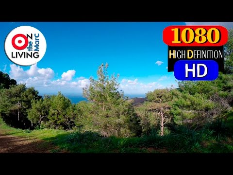 Exercise Ride With Me Forest Mountain MTB Ride HD 432 Hz GoPro Hero4 Feiyu-Tech G4 Gimbal CYPRUS