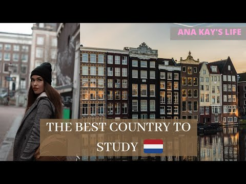8 reasons to study in The Netherlands