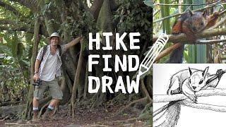 Hiking La Fortuna in Costa Rica & Drawing a Squirrel