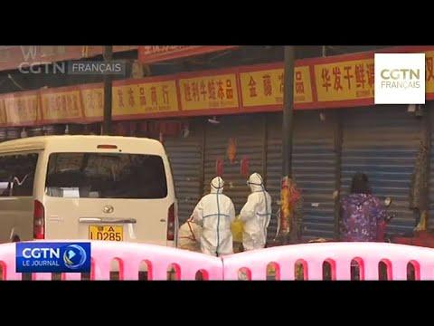 Le nombre de cas suspects à Hong Kong s'élève à 14
