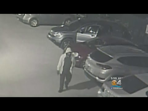CBS4 Exclusive: Police Say Air Bag Thieves Victimize Hundreds In Miami-Dade