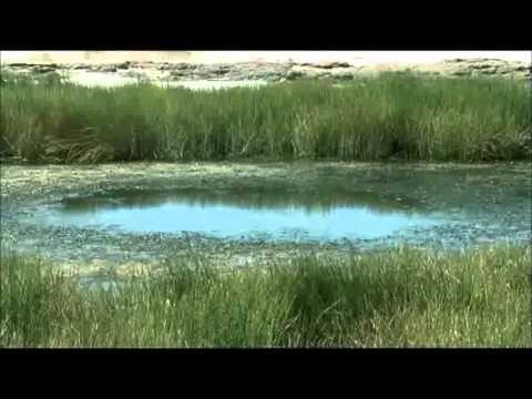 Australia Artesian Basin and Wells WMV