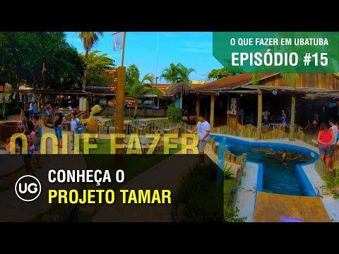 Projeto Tamar em Ubatuba - EP#15 - Final do City Tour sobre o que fazer em Ubatuba