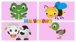 MALUCHOWO - Zwierzęta na wsi - Bajka dla dzieci
