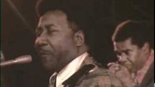 Muddy Waters ~ Long distance phone call