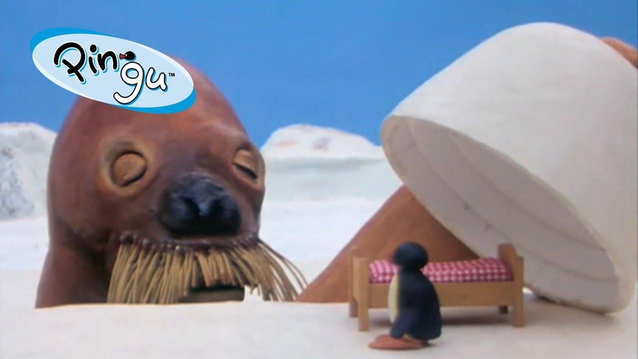 Pingu Pingu Dreams Youtube