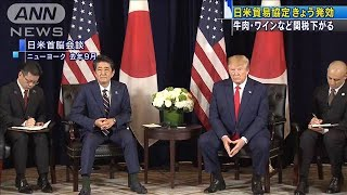 日米貿易協定発効 値下げメリットの一方で・・・(20/01/01)