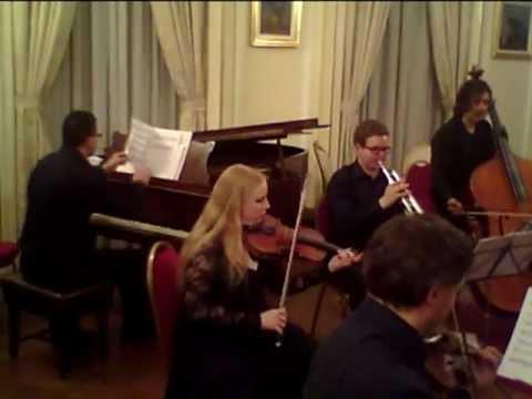 London Schubert Players, Romanian Cultural Institute, London 2010