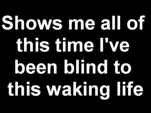 Schuyler Fisk - Waking Life (Lyrics)