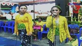 Single Terbaru -  Pamer Bojo Semog Cover Album Dangdut Koplo