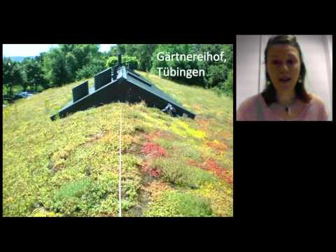 Vegetation Development on Extensive Green Roofs Over Time by Christine Thuring