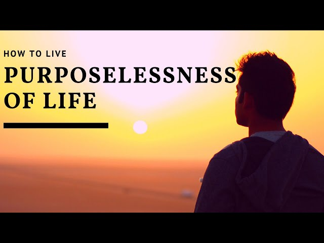 How to Live Purposelessness of Life? Sages say it is a Play, a