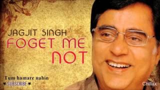 Tum hamare nahin -Forget me not - Jagjit Singh