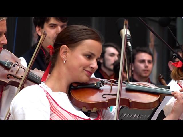 Folklorní soubor Rokytí / neděle 28. 6. v 15:00 / iFolklorní Strážnice 2020