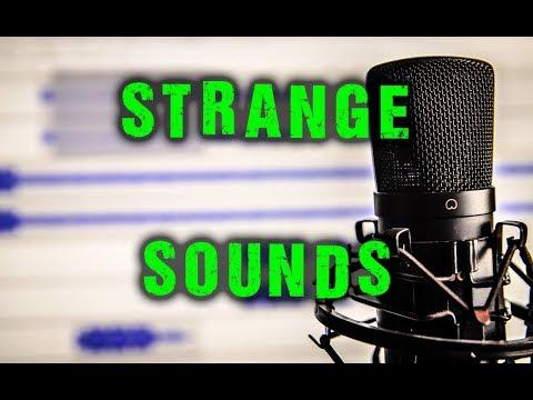 Preston & Steve Make Strange Sounds  Preston & Steves Daily Rush