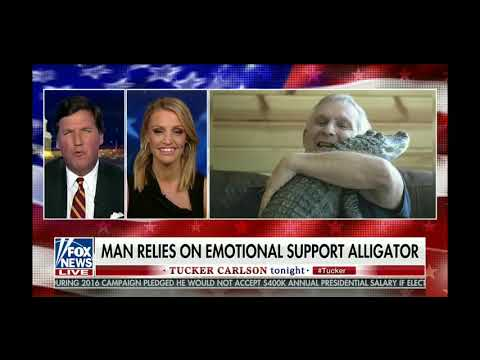 When emotional support animals go too far - Tucker Carlson 1/25/19