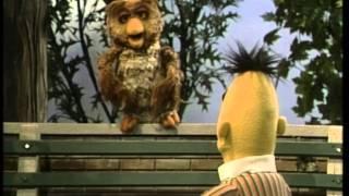Bert en Ernie - Bert en de Dieren