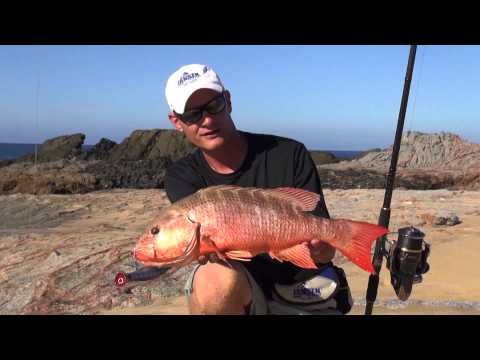 JANSEN Cabo Surf Fishing Part 1
