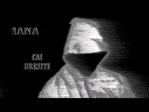 Iana - Cai gresite