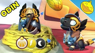 Hatching the Divine ODIN DRAGON + Epic JESTER DRAGON! - DML #1003