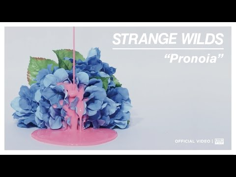 Strange Wilds - Pronoia [OFFICIAL VIDEO]