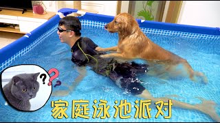 The owner installed a giant swimming pool at home. The Golden Retriever is broken