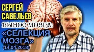 «ВЫНОС МОЗГА #40»: «Селекция мозга». 14.04.2018. Савельев С.В.