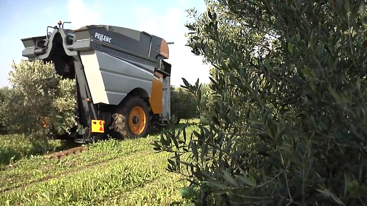Towed Olive CV5045 - Pellenc | Specialized agriculture