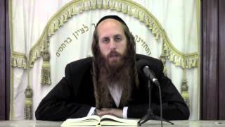 Introduction to the new series of womens shiurim | Women's Lectures (Shiurim)
