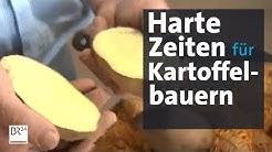 Wegen Corona: Pommeskrise in Bayern | Abendschau | BR24