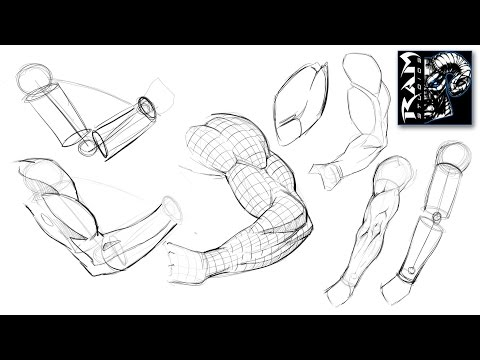 How to Draw Arms Step by Step - Narrated Tutorial