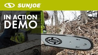 iON16CS - Sun Joe iON 40-Volt Cordless 16
