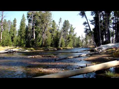 Sound of River Flowing Downstream (12Hrs) WHITE NOISE 4 Sleep, Focus, Relaxation, Meditation