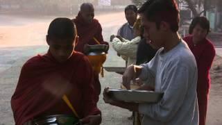 ALMS companion video - Theravada Pindapata Alms Round