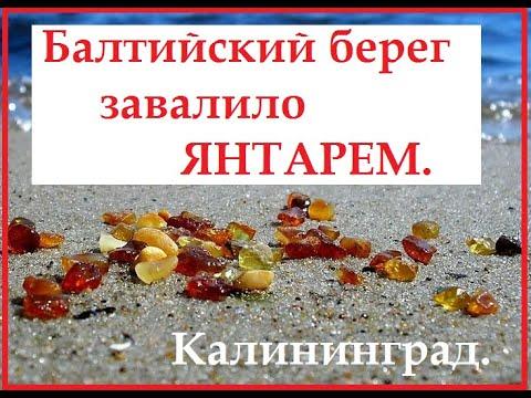 Балтийский берег завалило янтарем.Калининград.Балтийск.1марта2020.