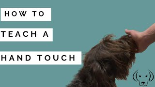 HOW TO: Teach a Hand Touch