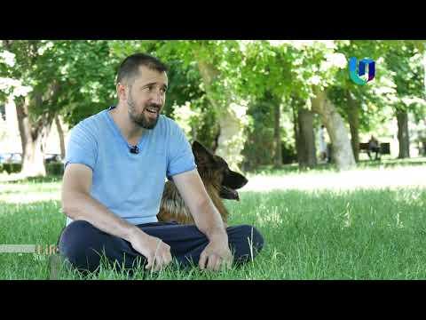 TeleU: Lifestyle by Silvia: Cât de important este dresajul canin