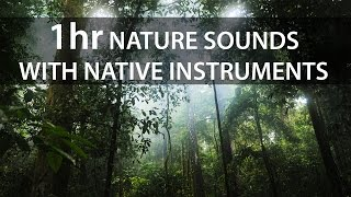 🎧 1 Hour meditation music with jungle nature sounds | Native instruments for healing & concentration
