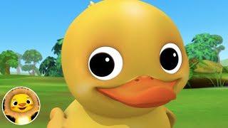 6 Little Ducks!   Nursery Rhymes & Kids Songs!   Videos For Kids   Little Baby Animals