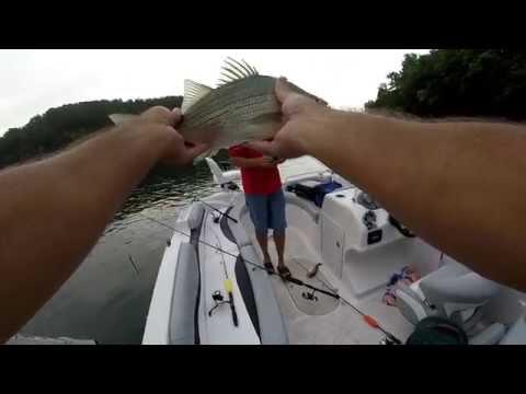 Bass Fishing on Lake Lure NC