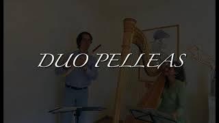 La harpe enchantée, Franz Schubert (1797-1828)