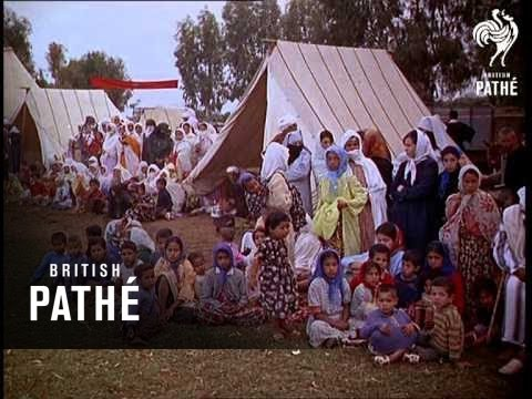 Cuts / Out Takes From Cp 666 - Reel 2 Of 2 - Morocco Aka Moroccan Fantasia (1967)