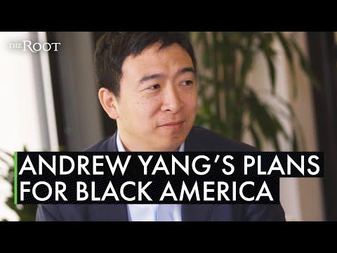 Andrew Yang's Plan For Black America