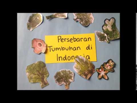Persebaran Flora Fauna di Indonesia & Dunia